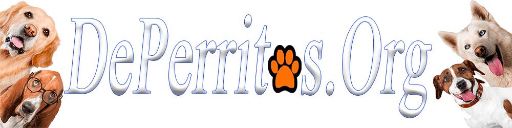 De Perritos | Todo Para Tu Mascota 🐾